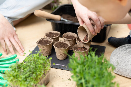 Home hobbies planting seeds. Young mother and son planting seeds in pots full of soil. Spring time activities.
