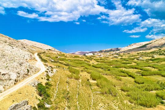 Metajna, island of Pag. Stone desert amazing scenery aerial view
