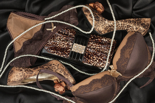 Handbag, underwear and leopard shoes. Luxury fashion background.