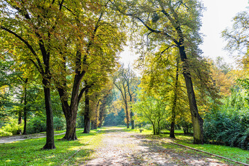 Lviv, Ukraine Ukrainian city old town with alley path in park during summer day to High Castle Hill and nobody with yellow foliage on trees