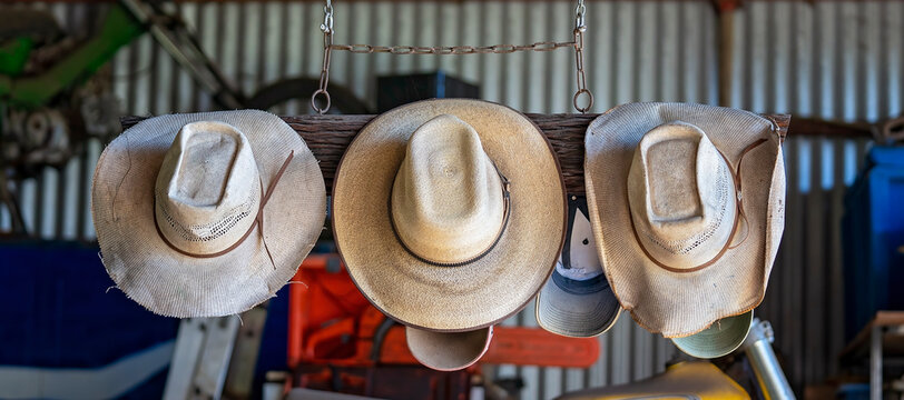 Three Old Hats Hanging In a Shed