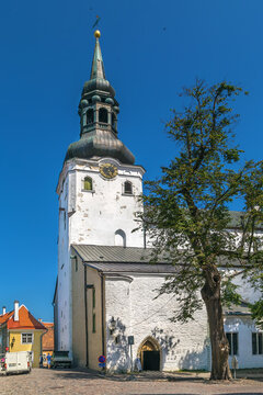 St. Mary's Cathedral, Tallinn, Estonia