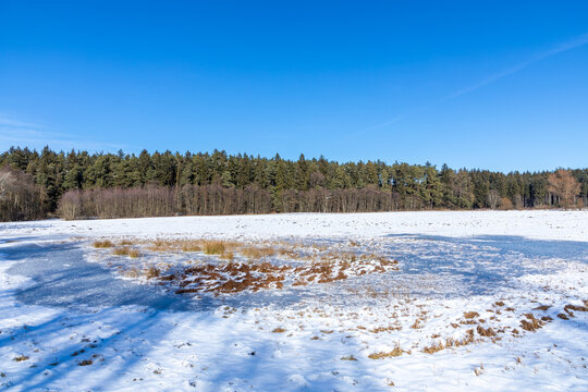 Das Rossmoos, ein Niedermoor bei Inchenhofen, Bayern, im Winter