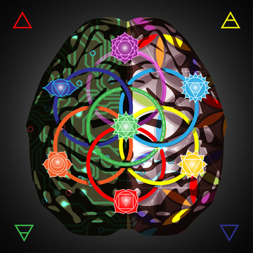 Looking for balance. Analytical brain vs creativity brain, concept vector illustration with chakra signs and seed of life