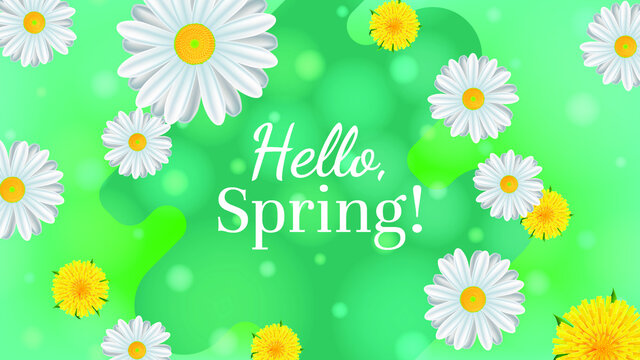 Hello spring baner. Illustration with daisies and dandelions