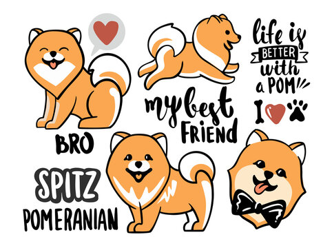 Cute spitz set with lettering and elements