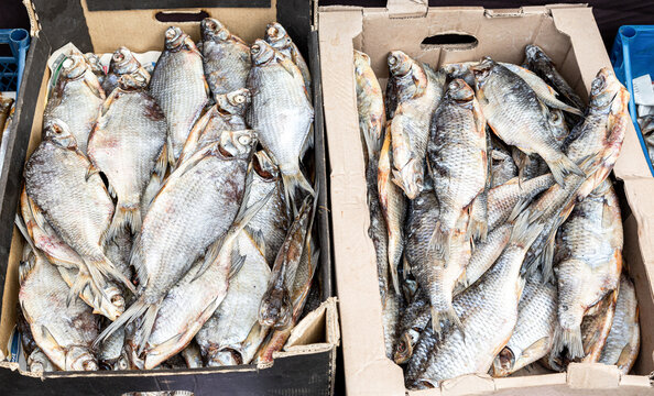 Tasty different dried salt fish ready to sale