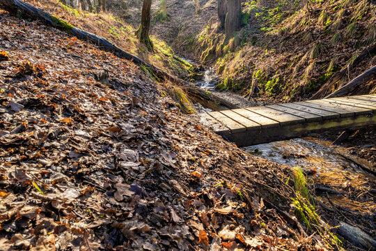 Über den Wanderpfad Wiedweg im Westerwald zum Rhein