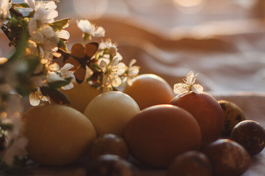 Modern pastel easter eggs and blooming cherry branch with butterfly on rustic cloth in sunny light