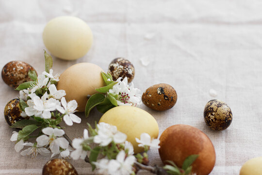 Happy Easter! Modern pastel easter eggs with spring flowers on rustic linen cloth, space for text