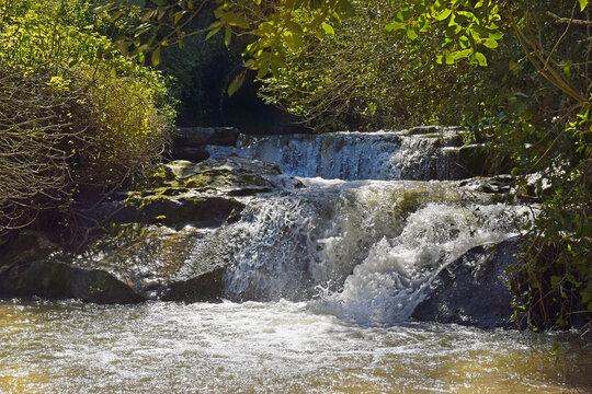 walk along the stream Nahal HaShofet - river flows through of HaZorea Forest, Ramat Menashe Biosphere Reserve, located near Mount Carmel, Israel