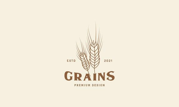 wheat grain leaf line hipster logo design vector icon symbol illustration