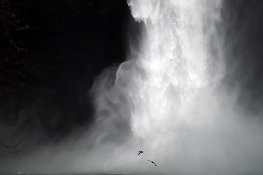 Geese Flying by Snoqualmie Falls