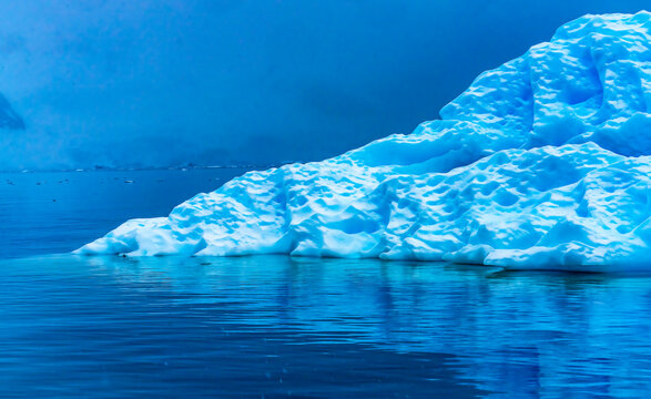 Snowing Floating Blue Iceberg Reflection Paradise Bay Antarctica