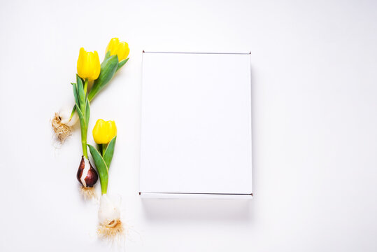 White cardboard box decorated with fresh yellow tulips