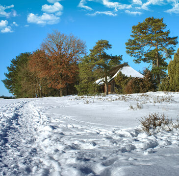 Snowy footpath leading to a historic sheep pen in the heath near Gifhorn, Germany.