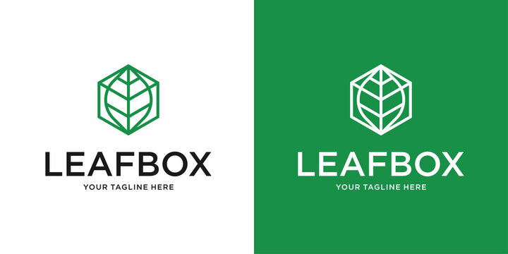 leaf box logo icon with for agriculture and technology company