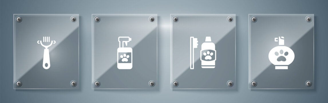 Set Pet shampoo, Dental hygiene for pets, and Hair brush dog and cat. Square glass panels. Vector.