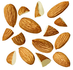 almond nut food healthy organic natural ingredient snack isolated seed brown fruit closeup...
