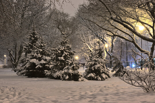 A winter city landscape showing heavy snowfall