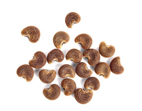 Ambrette Seed (Abelmoschus Moschatus). Top View. Isolated on White.