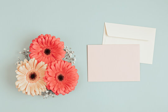 Gerbera flowers with blank card and envelopes over light green background.
