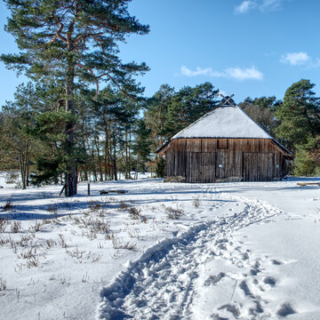 Winter landscape with a large historic sheep pen next to a pine tree behind a snowy footpath
