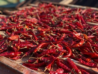 close up of many red hot chili peppers being dried in sun light