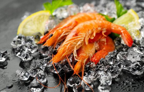 Shrimps. Fresh Prawns on a Black slate Background. Seafood on crashed ice served with herbs, dark backdrop. Served food, preparing healthy food, cooking, diet, nutrition concept