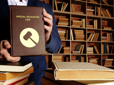 SPECIAL EDUCATION LAW book's title. Special education laws give children with disabilities and their parents important rights.