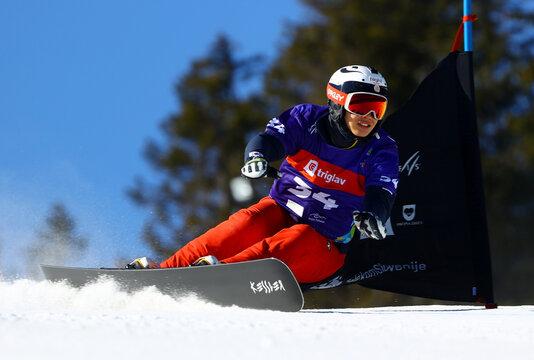 FIS Snowboard Alpine World Championship - Men's Parallel Giant Slalom