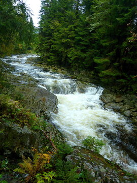 Czech Republic - view of the rapids on the river Elbe near the town of Spindleruv Mlyn