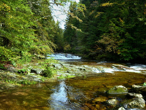 Czech Republic - view of the rapids on the White Elbe near the town of Spindleruv Mlyn