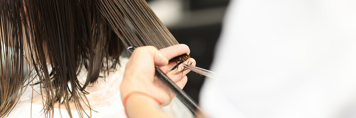 Hairdresser holds client's wet hair and cuts it. Training profession hairdresser concept