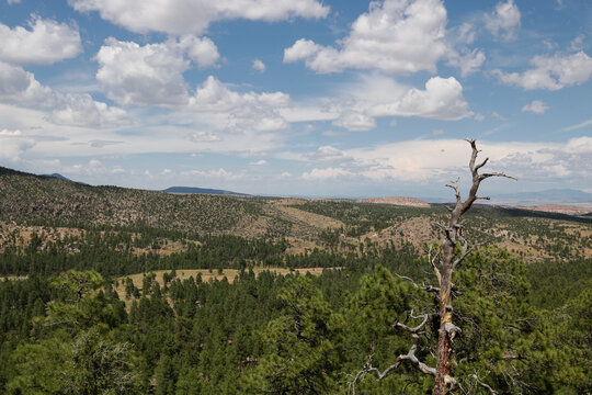 Panoramic View Panoramic view of landscape near Los Alamos, New Mexico..