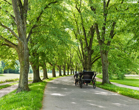 The Lichtentaler Allee in the spa park of Baden Baden _  Baden Baden, Baden Wuerttemberg, Germany