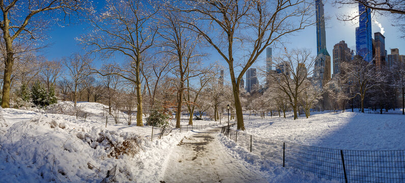 Central Park during winter, New York City. USA