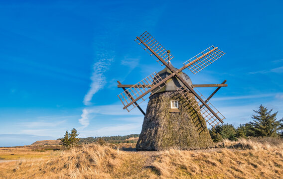 Lygnmoellen, wind mill Thacted with Heather in Western Denmark