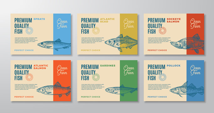 Fish Labels Set. Abstract Vector Packaging Design Layouts Collection. Modern Typography and Hand Drawn Sardine, Pollock, Scad and Sprat Sketch Silhouettes Backgrounds with Soft Shadows. Isolated