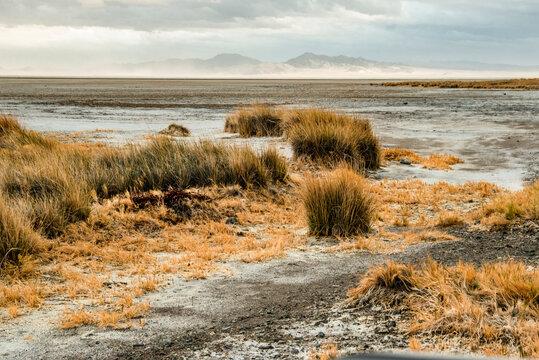 USA, California. Mojave Desert, Mojave National Preserve, Zzyzx, Mojave Soda lake.