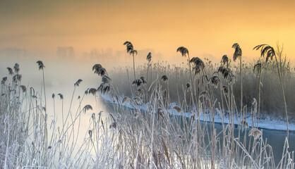 Zimowy Krajobraz O Brzasku  Nad Rzeką  - fototapety na wymiar