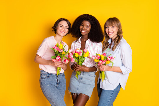 Portrait of three attractive cheerful girls holding in hands tulips festal occasion isolated over bright yellow color background