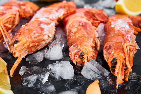 Frozen seafood. Fresh shrimps with lemon on dark background. Red raw prawns