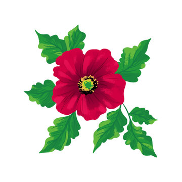 Flower Rosa canina isolated on white background. Hand drawing sketch. Vector pattern EPS10.