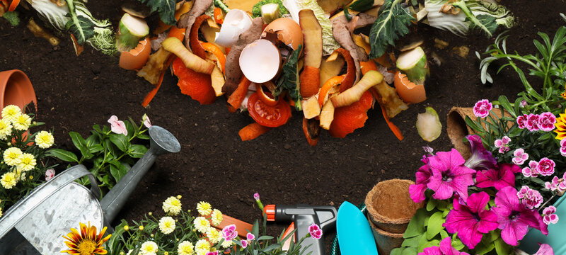 Gardening tools, flowers and organic waste for composting on soil, flat lay. Natural fertilizer