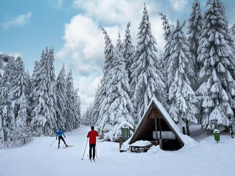Skifahrer am Rennsteig / Thüringer Wald