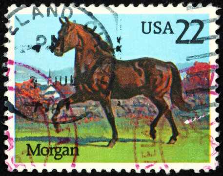Postage stamp USA 1985 the Morgan horse