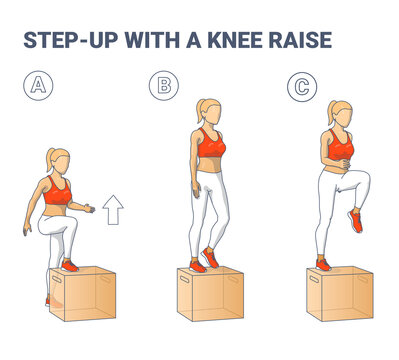 Step Up with a Knee Raise Exercise for Female Home Workout Guidance Colorful Illustration.
