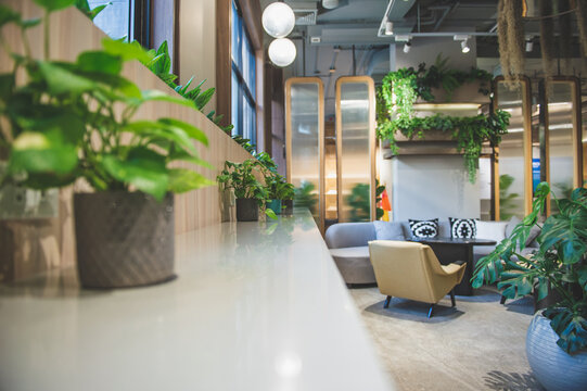 Coworking space, Was designed with a design, Biophilia.