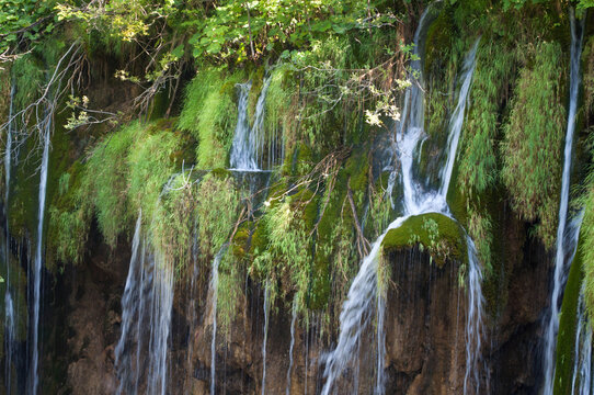 Waterfall and Moss in Plitvice National Park, Croatia